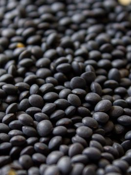 Lenteja Caviar