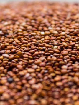Quinoa Roja BIO