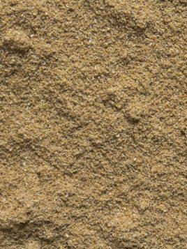cilantro-molido